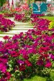 Träblåttbro i färgblommaträdgård, med träd och det konkreta spåret royaltyfri fotografi