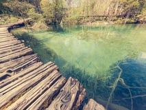 Träboardwlak som passerar vattenfall i naturligt, parkerar royaltyfri fotografi