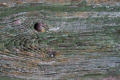 Träbräde med skalningsmålarfärg Arkivfoton