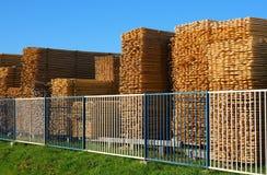 Träbräden som staplas på timmergården Royaltyfri Fotografi