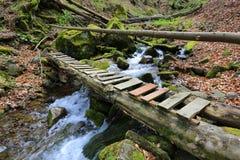 Träbro över bergbäcken Fotografering för Bildbyråer