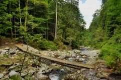 Träbro över en bergström Arkivfoton