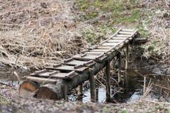 Träbro över en liten ström Natur Royaltyfri Fotografi