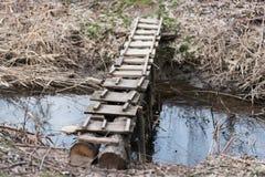 Träbro över en liten ström Natur Arkivbild