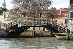 Träbro över kanalen med vatten royaltyfria bilder