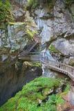 Träbro över klyfta Arkivfoto