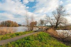 Träbro över vattnet Arkivbild