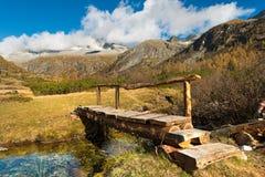 Träbro - Adamello Trento Italien Fotografering för Bildbyråer