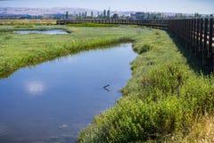 Träbro i Don Edwards djurlivfristad Arkivfoton