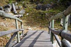 Träbro i en färgrik skog för höst Royaltyfria Foton