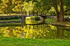 Träbro i en park royaltyfria bilder