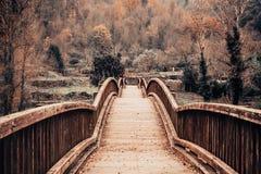 Träbro i ett höstlandskap fotografering för bildbyråer