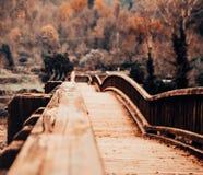 Träbro i ett höstlandskap arkivfoton