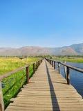 Träbro i Inke sjön Myanmar Arkivfoto