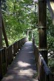Träbro i skog Arkivbild