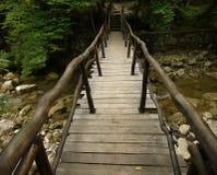 Träbro i skogen. Royaltyfri Fotografi