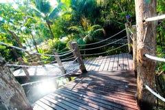 Träbro i trädgården Arkivfoto