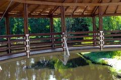 Träbro i träsket Fotografering för Bildbyråer