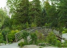 Träbro, liten bro royaltyfri fotografi