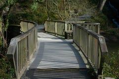 Träbro med räcke i parkland Royaltyfri Bild
