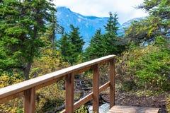 Träbro och enorma landskapsikter av alpina träd och berg arkivfoton