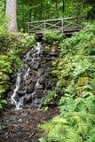 Träbro och vattenfall Arkivbilder