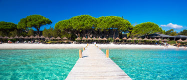 Träbro på den Santa Giulia stranden, Korsika, Frankrike, Europa royaltyfria bilder