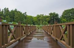 Träbro på ett damm Royaltyfri Bild