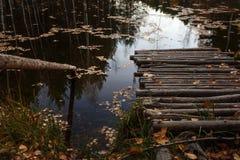 Träbro på sjön royaltyfri bild