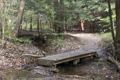 Träbro på slingan, Ash Cave, Ohio fotografering för bildbyråer