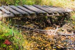 Träbron över The Creek Royaltyfri Bild