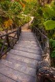 Träbron av brädena går ner Tulum Riviera Maya, Yucatan, Mexico Arkivfoton