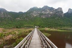 Träbron för lopp och ser naturekologi på Khao Sam Roi arkivfoto