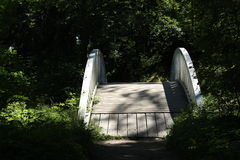 Träbron i Monrepo parkerar i Vyborg Royaltyfri Foto