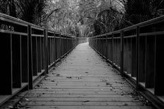 Träbron i svartvitt Arkivfoto