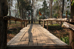 Träbron parkerar in i den buddistiska kloster, Thailand Arkivbild