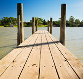 Murray River brygga Arkivfoto