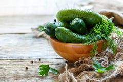 Träbunke med frasiga rimmade gurkor Fotografering för Bildbyråer