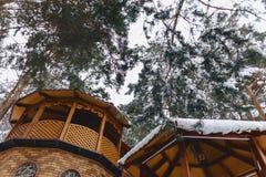 Träbyggnad under snö-täckt sörjer träd arkivbilder