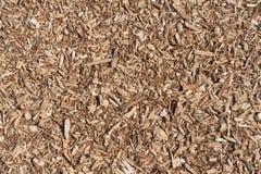 Trächiper, sågspån som en naturlig bakgrund arkivbilder
