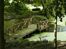 Trädäck på ett avslappnande grönt damm i en trädgård Royaltyfria Bilder