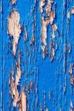 Trädörren, gammala blått målar royaltyfri bild