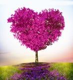 Träd av förälskelse royaltyfri bild