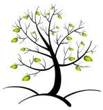 Träd av liv Royaltyfria Foton