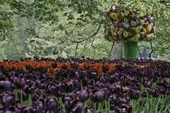 Träd av liv i Springgarden Keukenhof Royaltyfri Bild