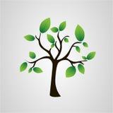 Träd av sidor royaltyfri illustrationer