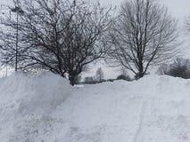 Träd bak högar av den insnöade parkeringsplatsen i Lafayette Indiana Royaltyfri Bild