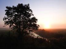 Träd, chanel och sol i morgon, Litauen royaltyfri fotografi