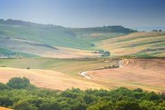 Träd, fält och atmosfär i Tuscany, Italien Arkivfoton