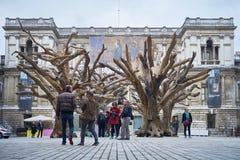 Träd för Ai Wei Weis på den kungliga akademin av konster Arkivbild